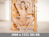 t3250_996178c8.jpg