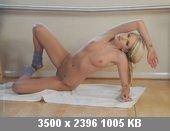 t4254_22fd036b.jpg