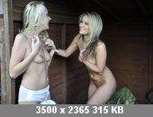 t5623_8260324f.jpg