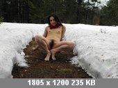 t6561_da13797d.jpg