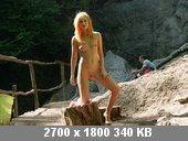 t8668_18db40f8.jpg