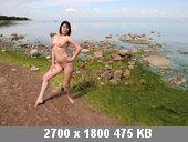 t9303_3ab1313f.jpg
